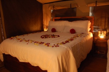 Romantic Rooms Lady Africa Lodge