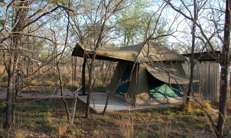 Bush C& & Lady Africa Lodge u2013 Limpopo Bliss