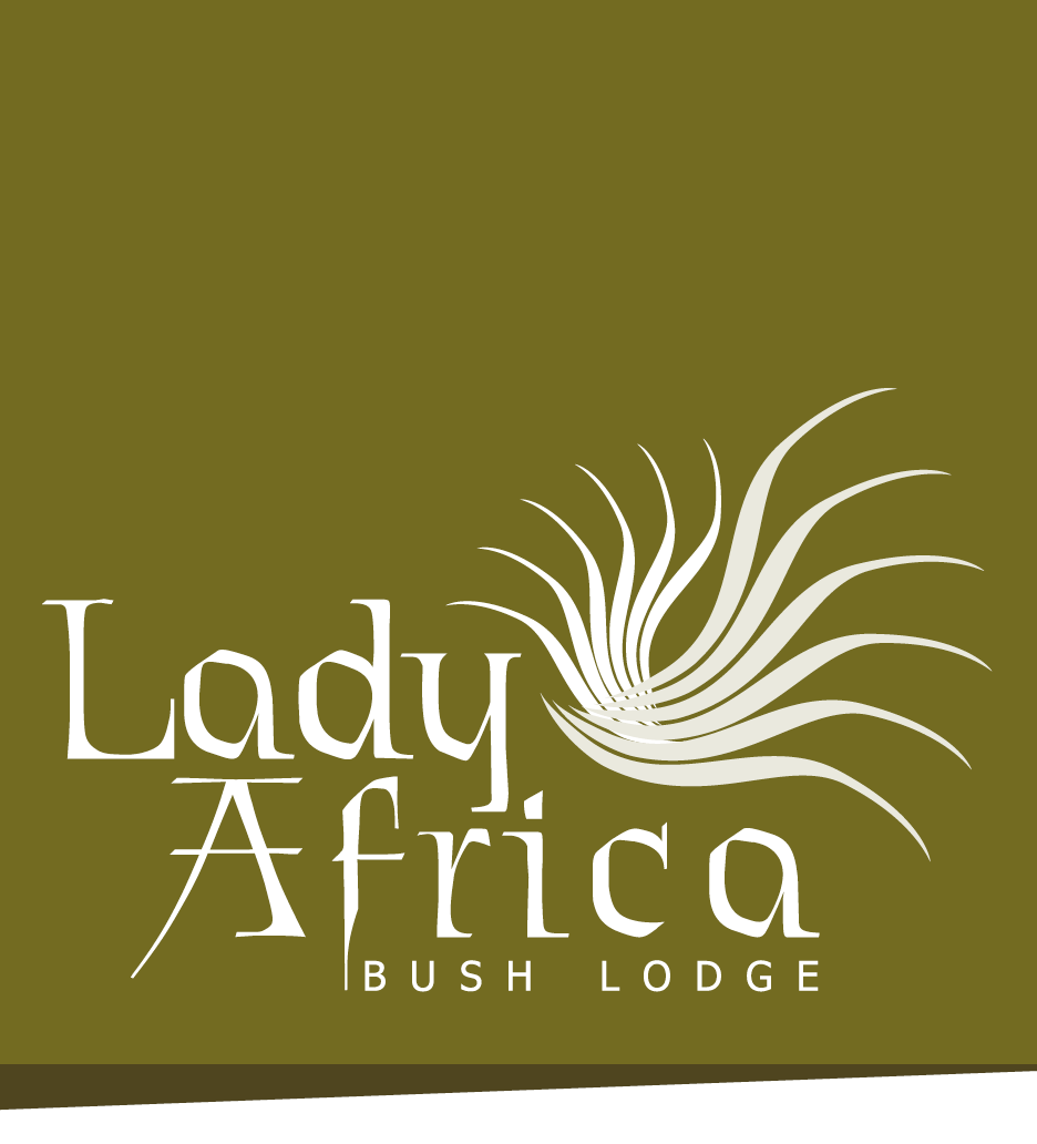 Lady Africa Lodge